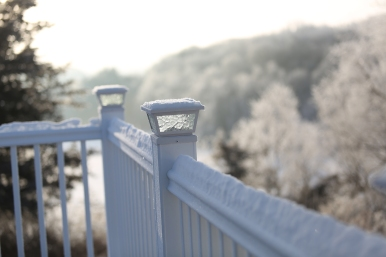 frosted_0021